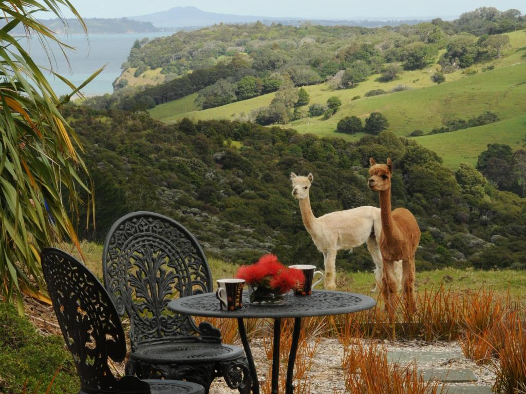 More about Mahurangi West Wing - Luxury Bed and Breakfast