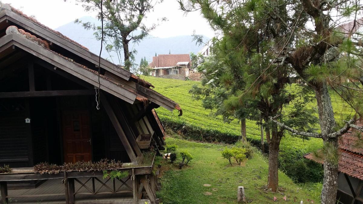 Gambar Kebun Teh Di Ciwidey Villa 69 M Dengan 2 Kamar Tidur Dan 1 Kamar Mandi Pribadi Di Ciwidey Bandung Promo Terbaru 2020 Foto Hd Ulasan
