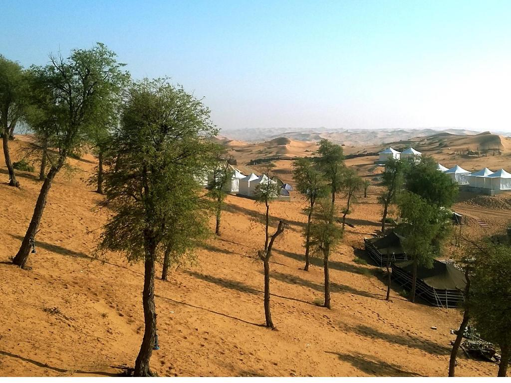 More about Bedouin Oasis Camp