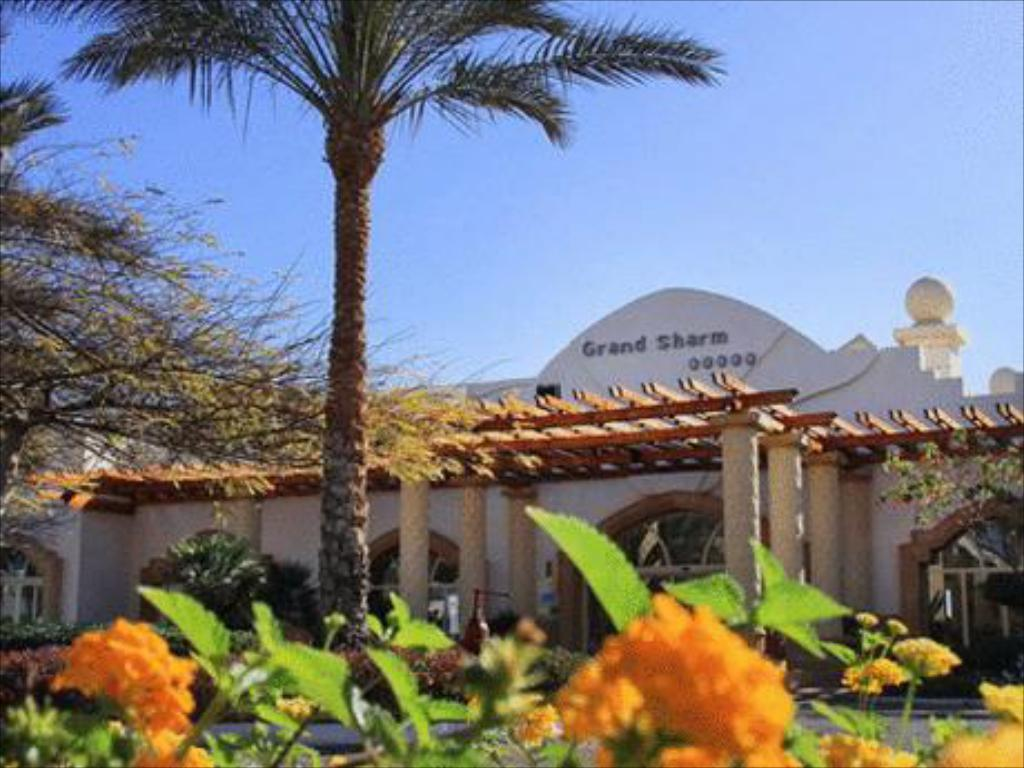 Mais sobre Royal Grand Sharm Resort