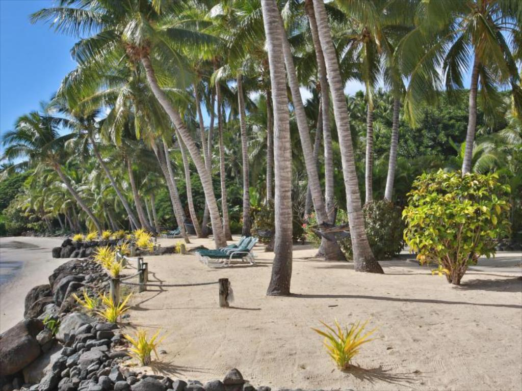 Strand Wananavu Beach Resort