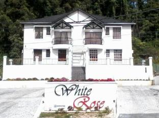 White Rose Apartment