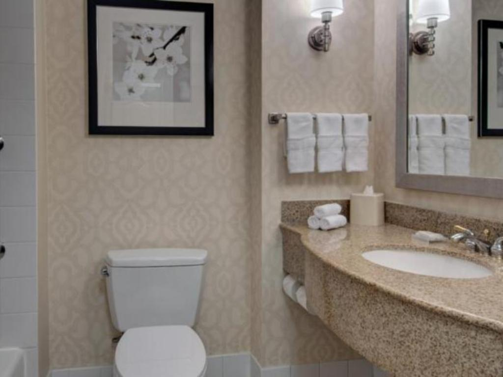 2 Double Beds - Banyo Hilton Garden Inn Washington DC Downtown Hotel