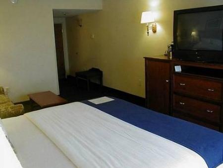 Standarta Holiday Inn Express Hotel & Suites Montgomery Boyd-Cooper Parkway