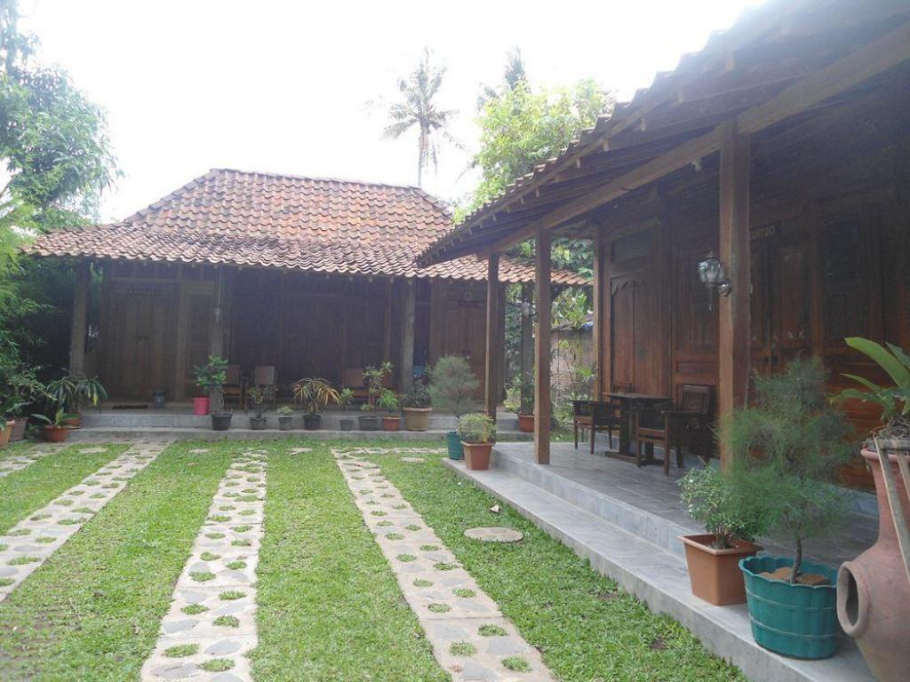 More about Kampung Tembi Guest House