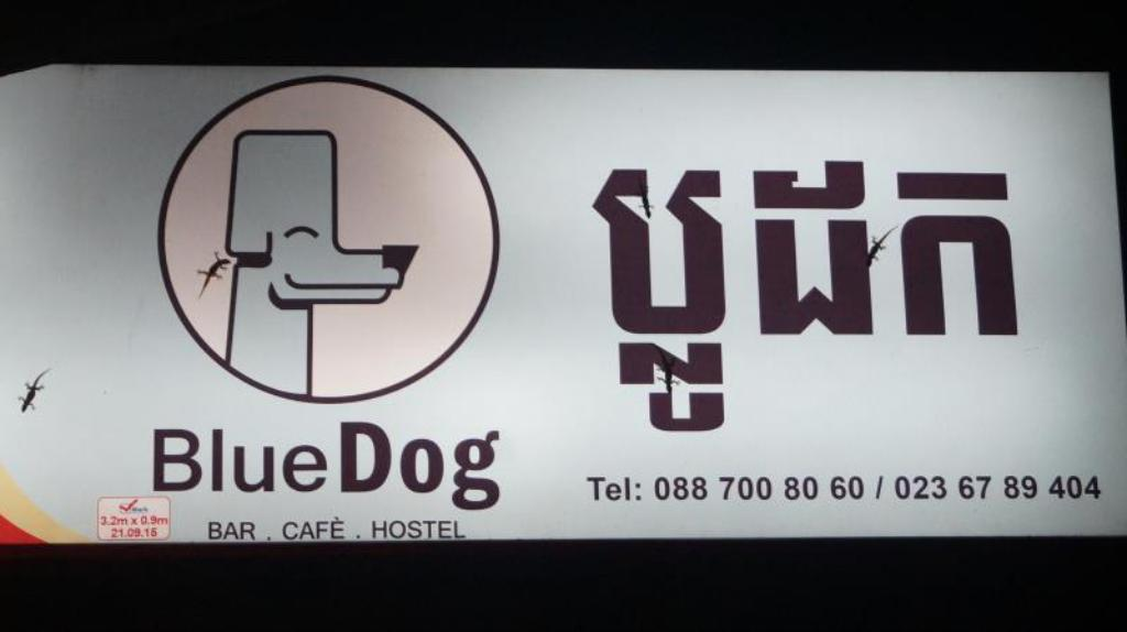 Blue Dog Guesthouse in Phnom Penh - Room Deals, Photos & Reviews