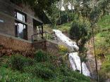 Oland Plantation Farm Stay - Coonoor