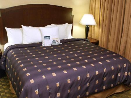 1 King 1 Bedroom Suite Non-Smoking - Guestroom Homewood Suites By Hilton South Las Vegas Hotel