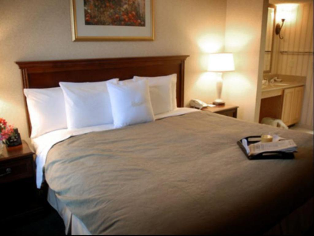 Room with King Bed, Roll-In Shower and Fireplace - Accessible, Non-Smoking - Katil Homewood Suites By Hilton Columbus Worthington