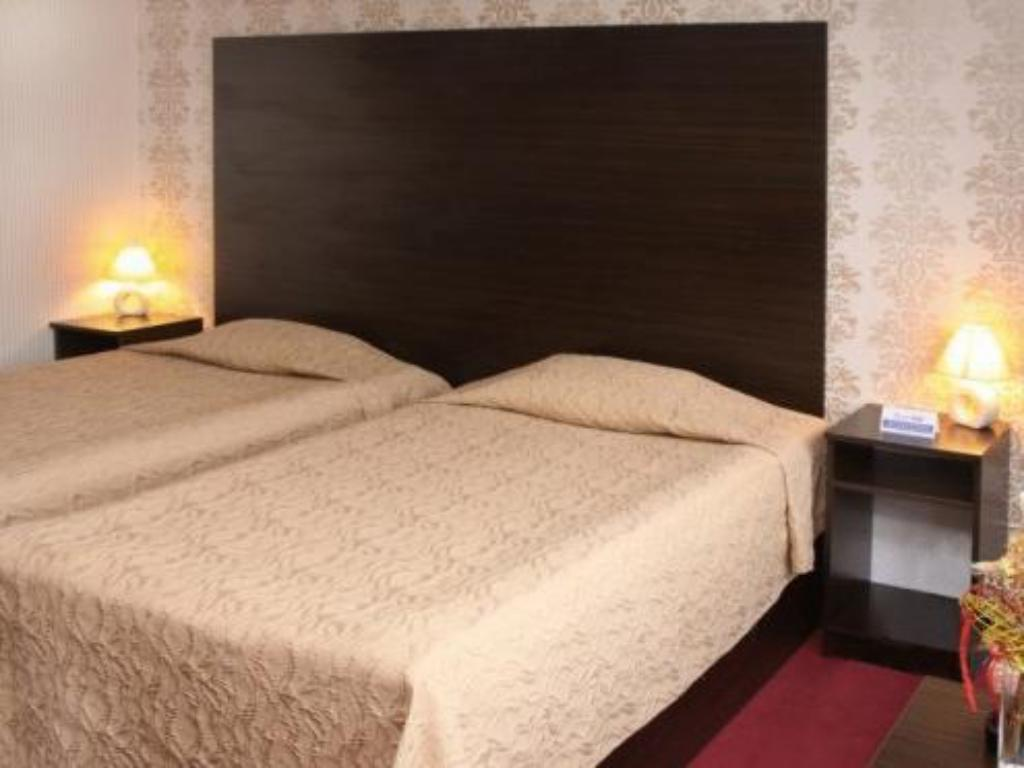 Standard Double or Twin Room - Bed Grand Hotel Shumen