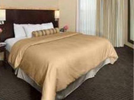 Executive cu pat king-size Embassy Suites Hotel Birmingham