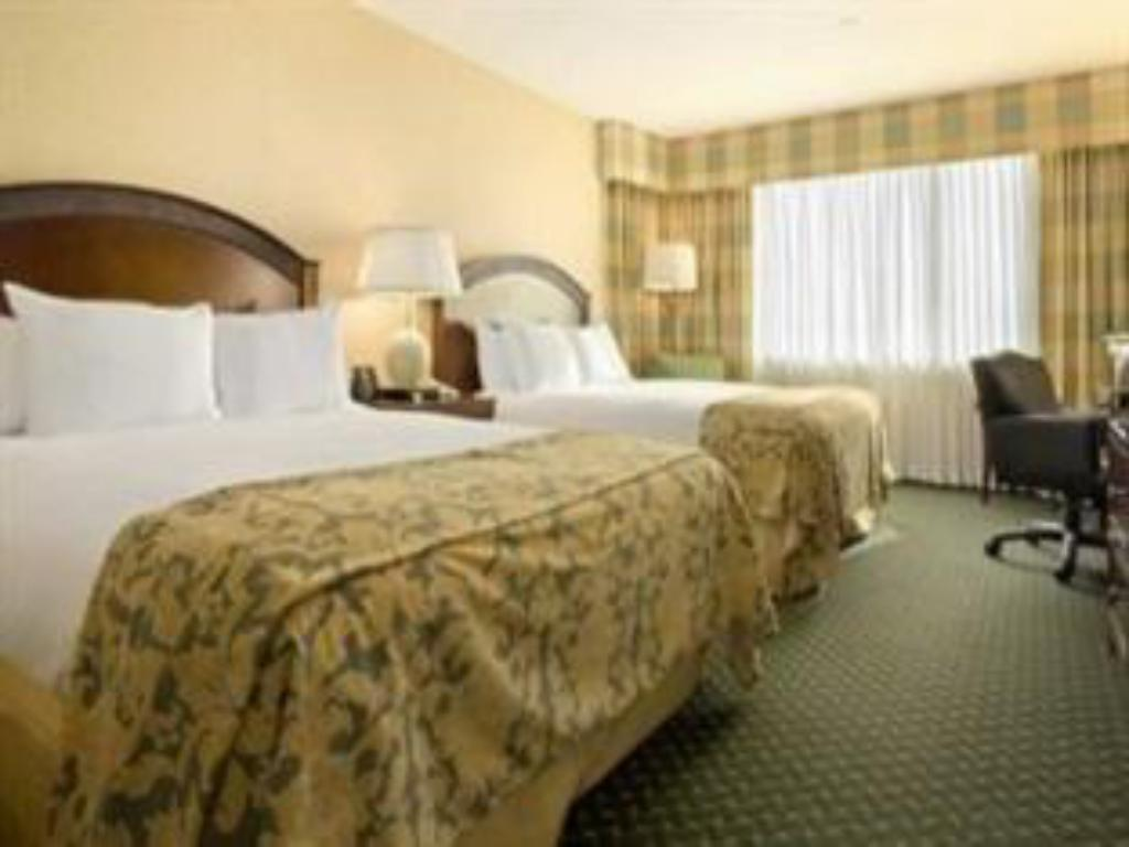 2 Double Executive Floor Hilton East Brunswick Hotel & Executive Meeting Center
