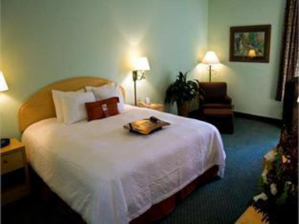 Room with King Bed and Roll-In Shower - Accessible, Non-Smoking - Katil Hampton Inn and Suites Orlando Ucf