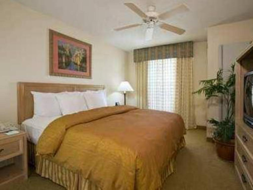 Homewood Suites by Hilton Austin-South Airport in Austin (TX) - Room ...