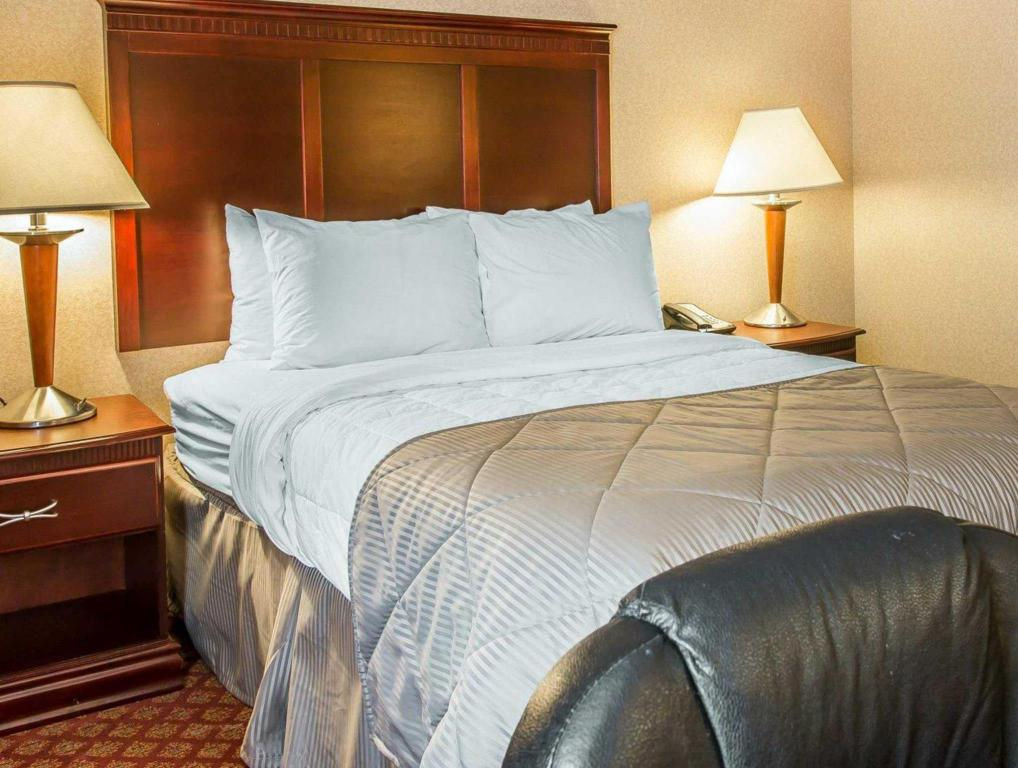 Standard Termasuk 1 Katil King - Katil Clarion Inn and Suites Airport Grand Rapids