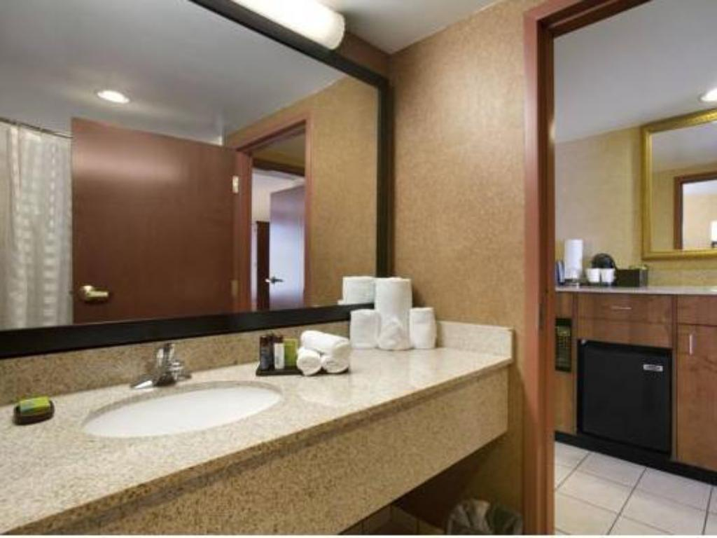 King Room - Non-Smoking Embassy Suites Hotel Denver - International Airport