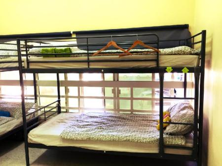 1 Person in 6-Bed Dormitory with Shared Bathroom - Female Only Backpacker Accommodation