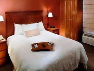 Room with Queen Bed and Bathtub - Accessible, Non-Smoking (1 Queen Accessible Tub Non-Smoking)