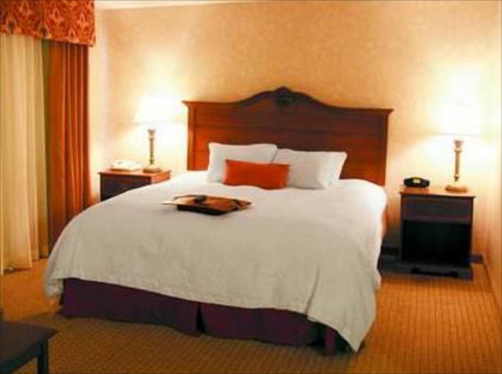 King Room with Sofa Bed - Bed Hampton Inn Wytheville