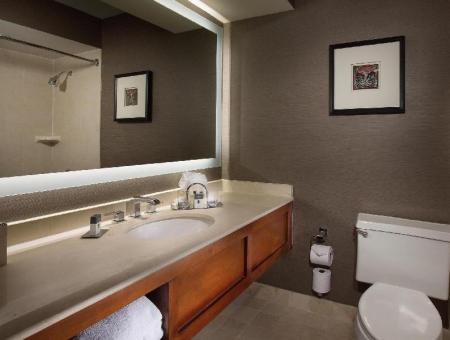 Vannas istaba DoubleTree by Hilton Hotel Chicago - Oak Brook