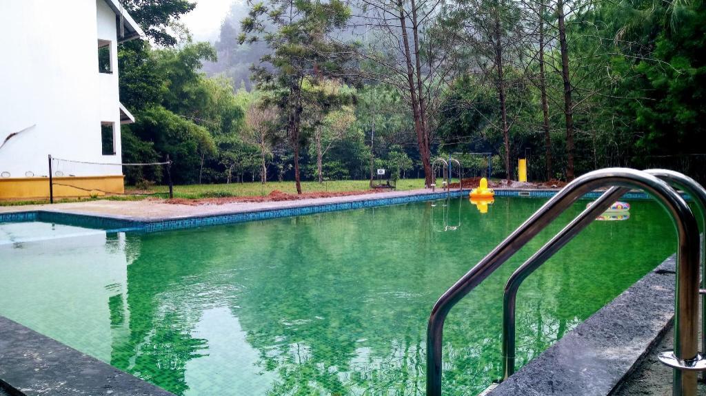 Vythiri Greens Resort In Wayanad Room Deals Photos Reviews