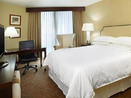 1 Bedroom Sheraton Houston Brookhollow Hotel