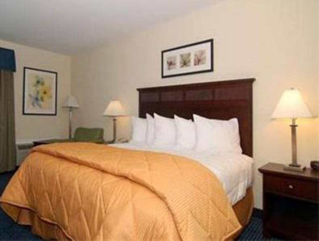 Deluxe - Llit Quality Inn and Suites Williamsburg Central