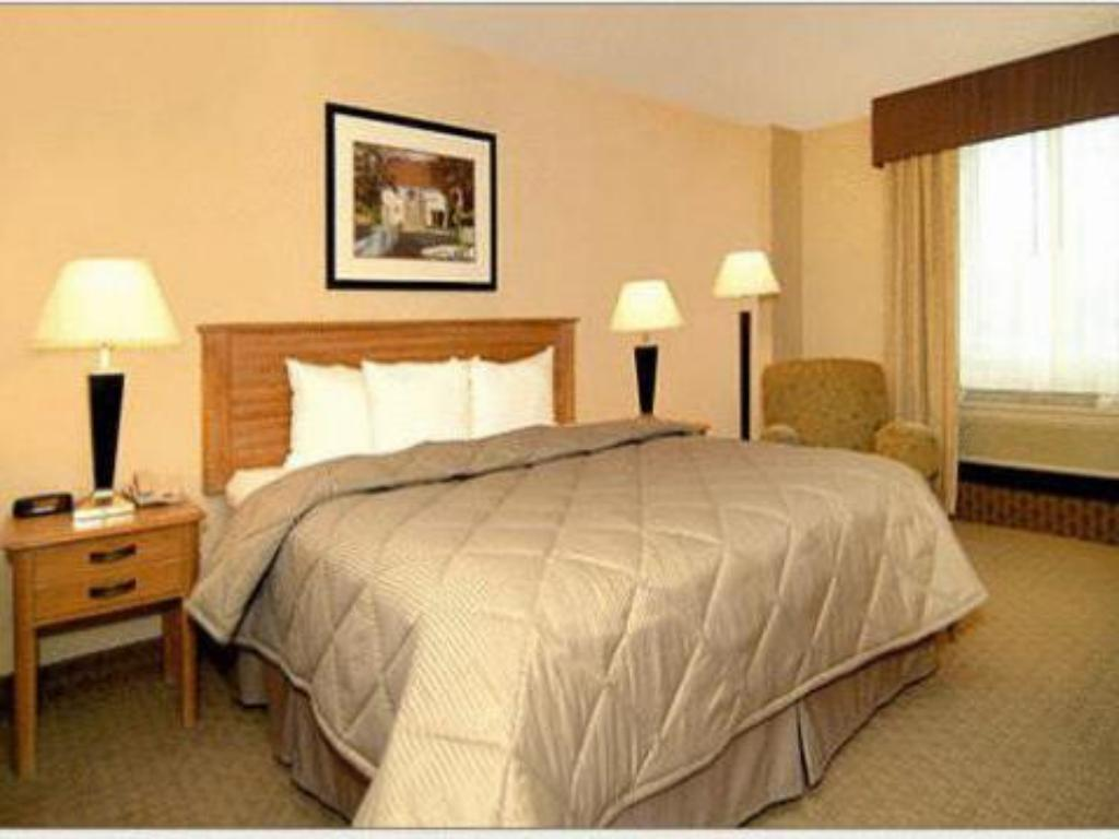 Standard - Cama Comfort Inn & Suites Presidential (Comfort Inn and Suites Presidential Little Rock)