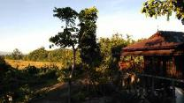 Bambuh Boutique Homestay - Adult Only