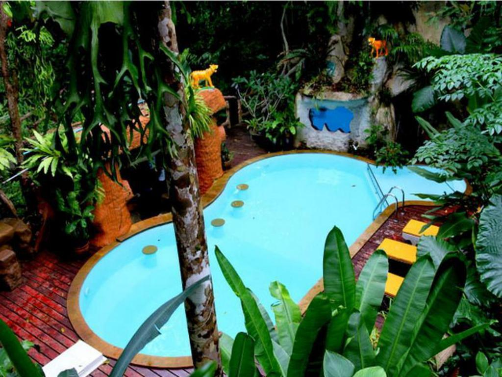Swimming pool [outdoor] Khaosok Treehouse Resort