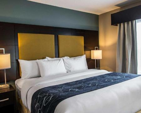Suite King Bed Non-Smoking - Bed Comfort Suites Fort Lauderdale Airport South & Cruise Port