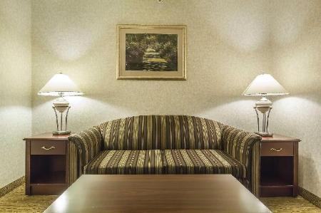das comfort inn and suites medicine hat in medicine hat ab buchen. Black Bedroom Furniture Sets. Home Design Ideas