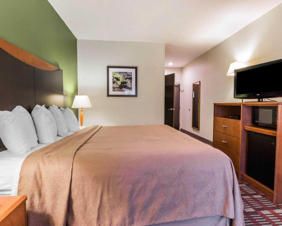1 Llit King No Fumadors - Llit Quality Inn and Suites Birmingham - Highway 280