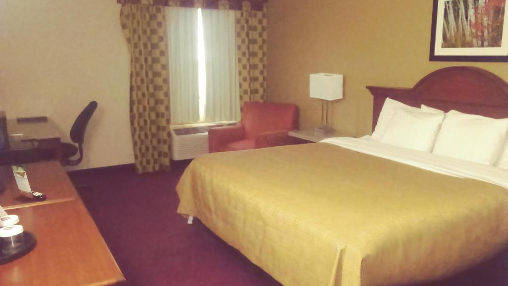 1 King Bed Nonsmoking - Bed Clarion Inn Hotel Kalamazoo