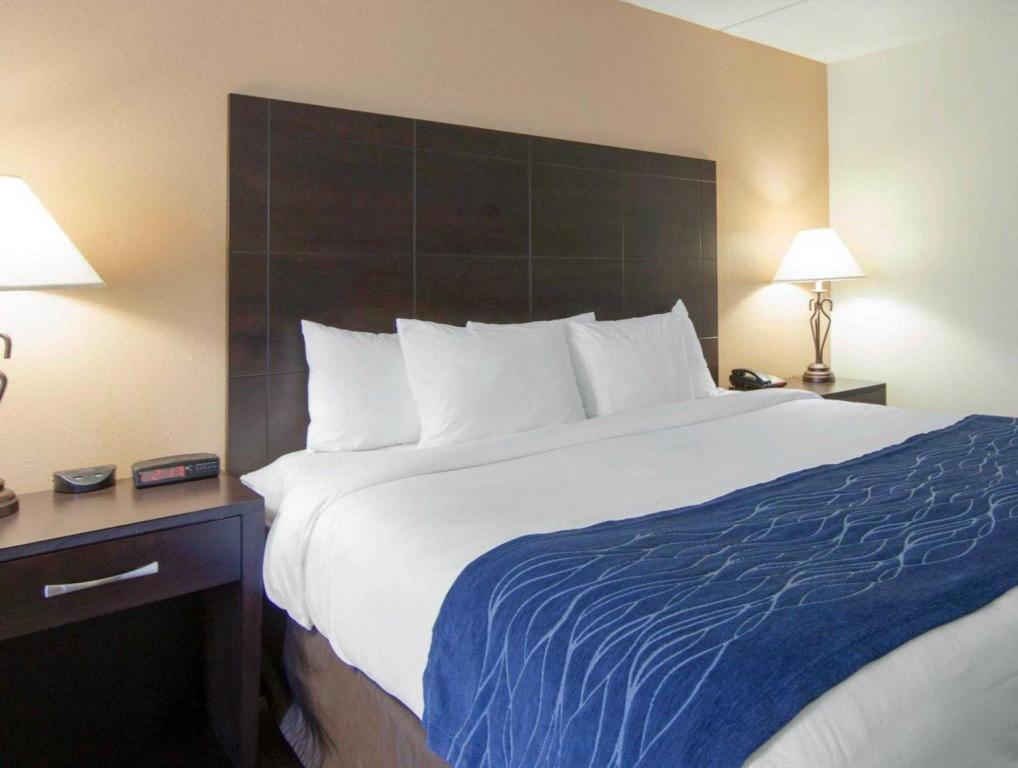 Comfort Inn Oak Ridge Knoxville In Oak Ridge TN Room Deals - Oakridge bedroom furniture