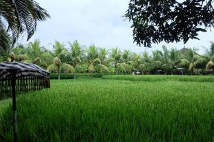 Bebek Tepi Sawah Villa And Spa