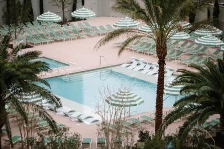 Swimming pool [outdoor] Park MGM Las Vegas