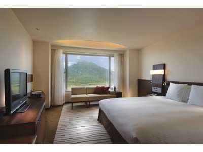 Deluxe King Room (Mountain View)