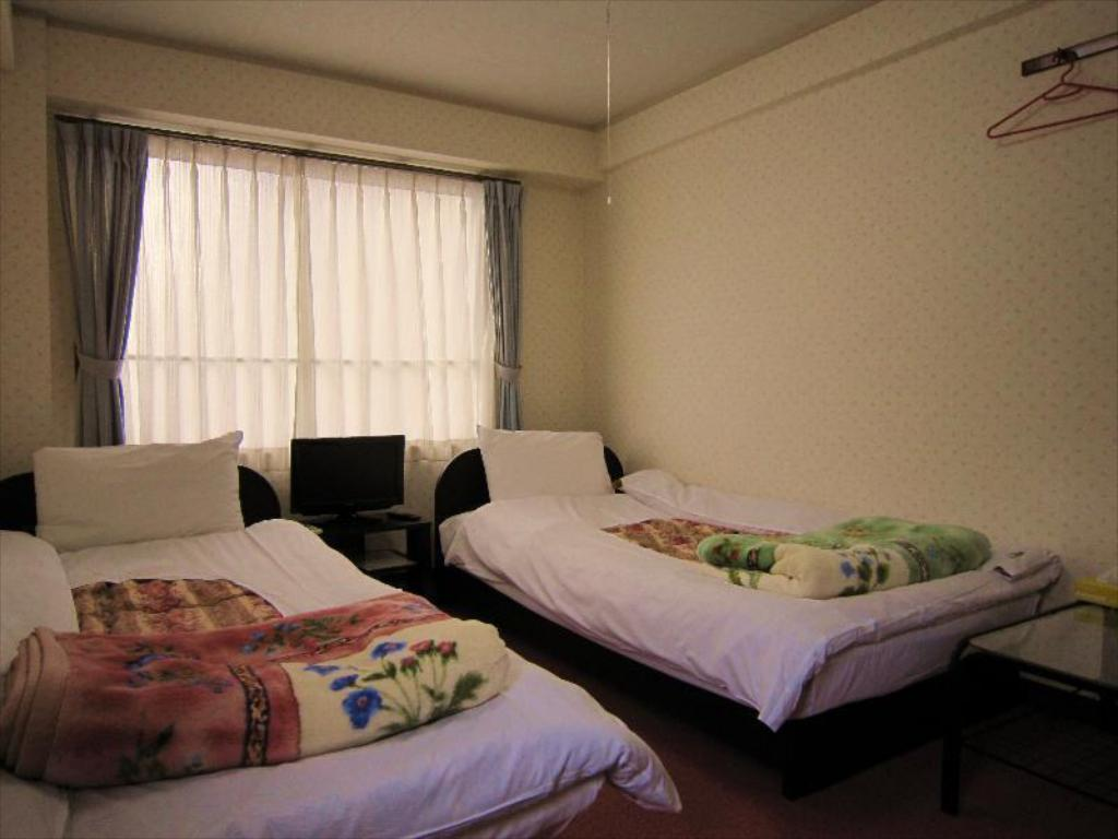 Twin Room - Guestroom Pension Kitasirakawa