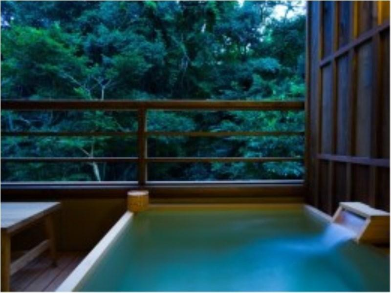 Deluxe Japanese Style Room with Open-Air Bath