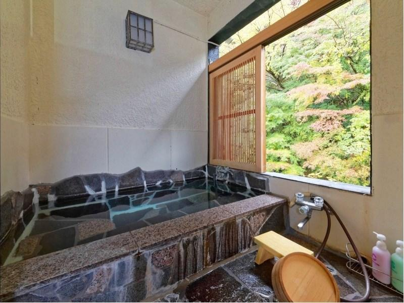 展望風呂付和室 ≪禁煙≫ (Japanese-style Room with Scenic View Bath)