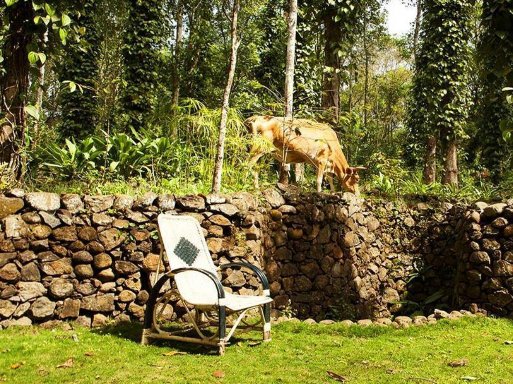 Pemandangan luar Elephant Valley Eco Farm Lodge