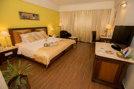 Kamar Executive - Ranjang The Piccadily Hotel Lucknow