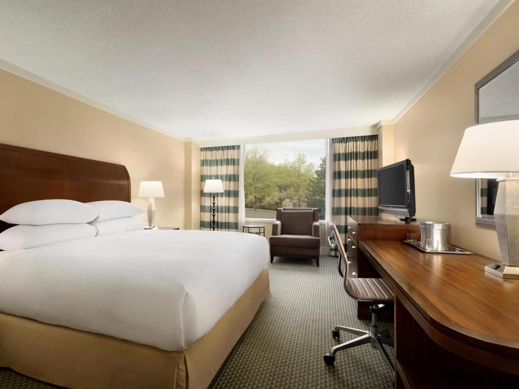 1 King Bed - Guestroom Hilton Stamford & Executive Meeting Center Hotel