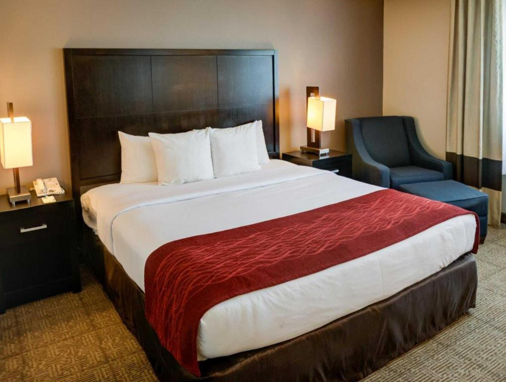 1 King Bed Nonsmoking - Bed Comfort Inn and Suites San Diego - Zoo SeaWorld Area