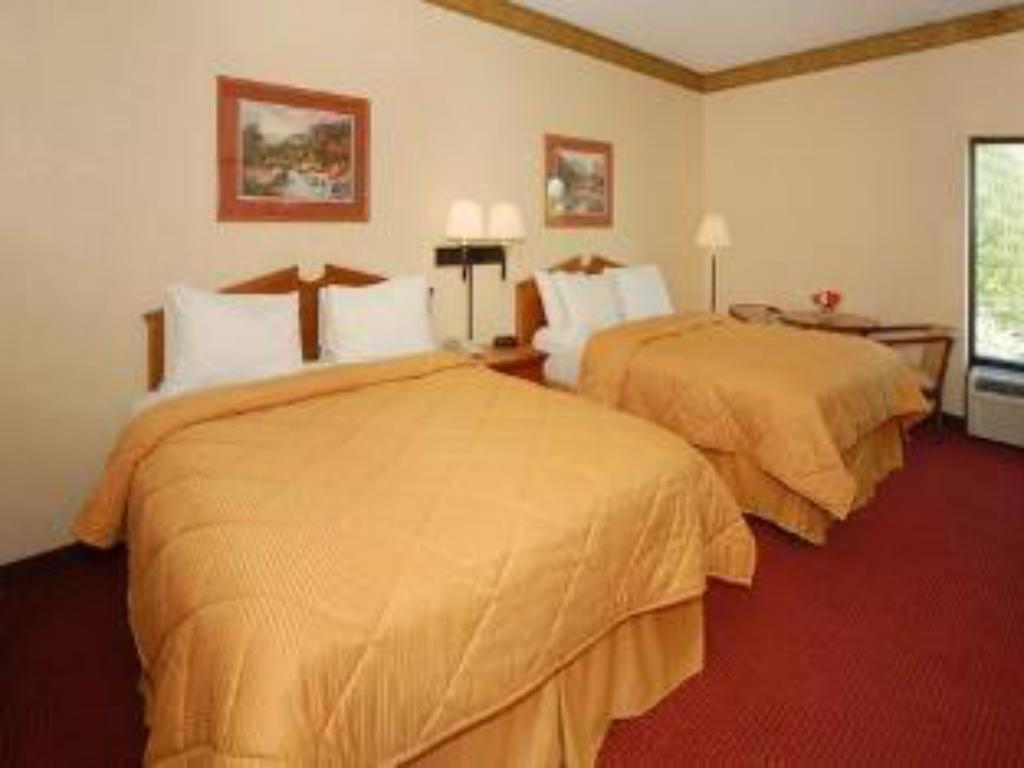 Deluxe klases numurs Comfort Inn & Suites at Stone Mountain