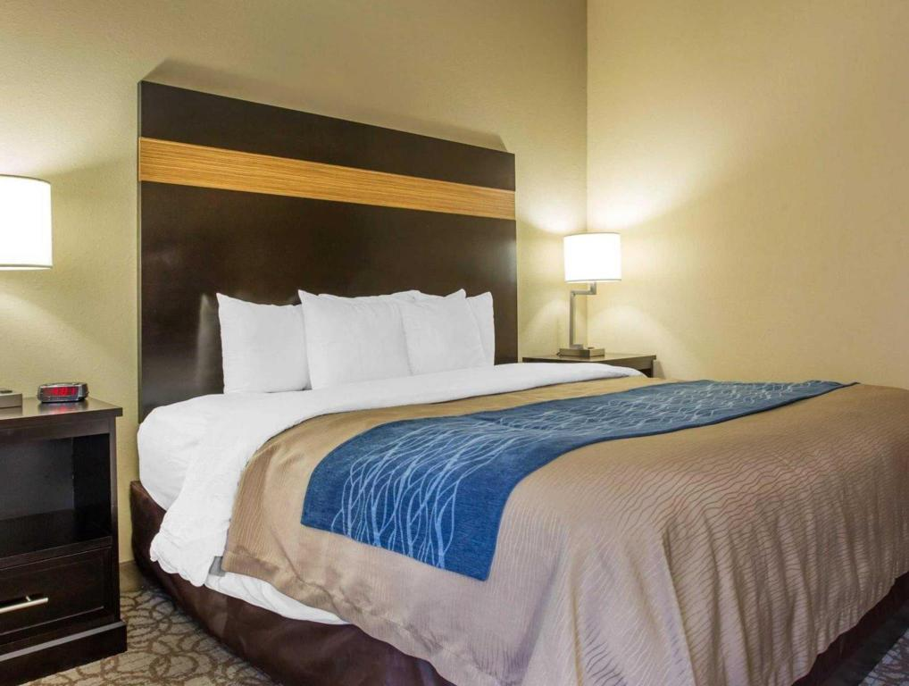 Quarto King - Acesso para Deficientes - Cama Comfort Inn & Suites at Stone Mountain
