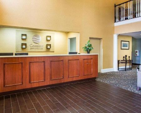 Vestabils Comfort Inn & Suites at Stone Mountain