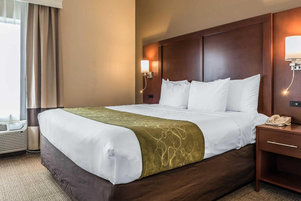 Standard with 1 King Bed Comfort Suites Springfield