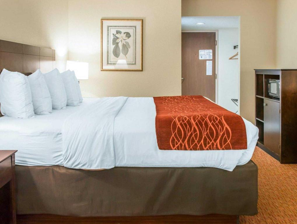 1 King Bed Nonsmoking - Bed Quality Inn